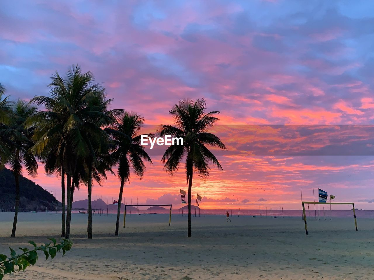palm tree, sky, tropical climate, tree, beach, beauty in nature, sunset, cloud - sky, land, scenics - nature, water, plant, tranquility, tranquil scene, nature, sea, sand, orange color, no people, outdoors, horizon over water, coconut palm tree, tropical tree