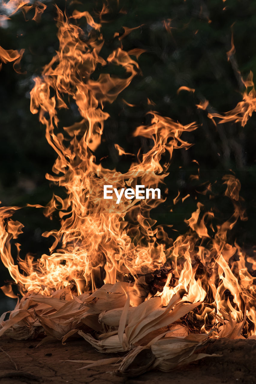 fire, burning, flame, fire - natural phenomenon, heat - temperature, nature, motion, orange color, glowing, real people, long exposure, blurred motion, bonfire, land, wood, log, night, outdoors, wood - material, close-up, campfire