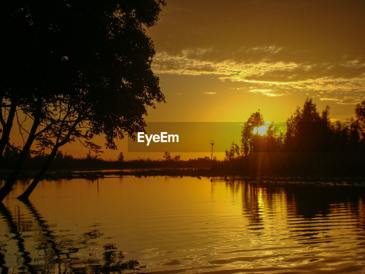 sunset, water, sky, reflection, tree, scenics - nature, tranquility, beauty in nature, lake, plant, orange color, tranquil scene, nature, cloud - sky, silhouette, no people, waterfront, idyllic, outdoors