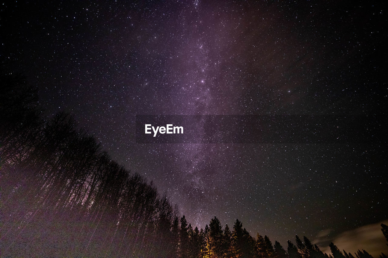 space, night, astronomy, star - space, beauty in nature, tree, scenics - nature, galaxy, sky, tranquility, tranquil scene, star, plant, nature, star field, low angle view, no people, idyllic, constellation, milky way, purple, space and astronomy