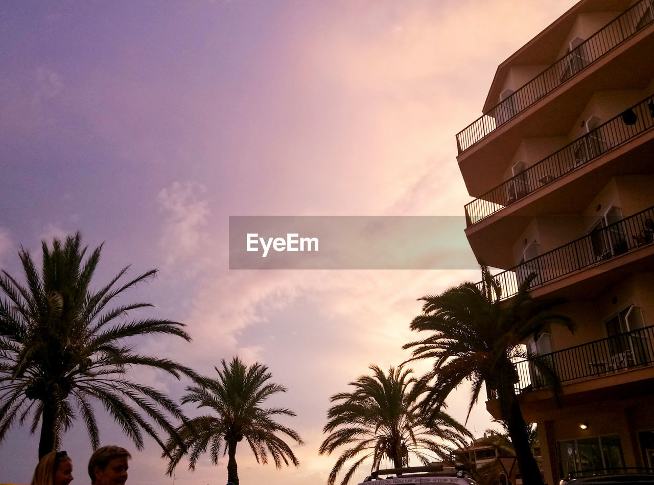 palm tree, sunset, sky, tree, low angle view, outdoors, building exterior, architecture, nature, built structure, no people, cloud - sky, beauty in nature, scenics, day