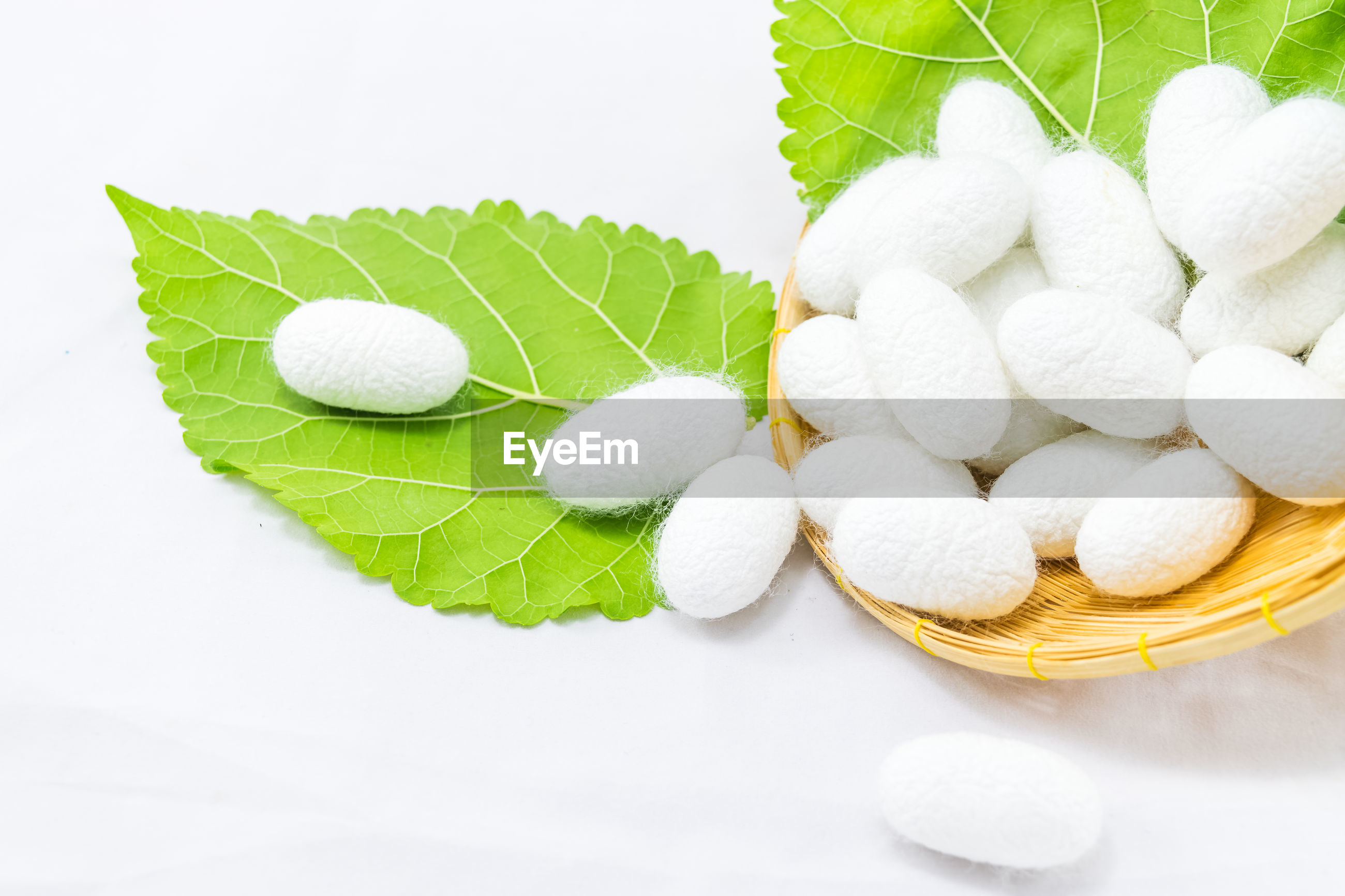 High angle view of coccons and leaves in basket against white background