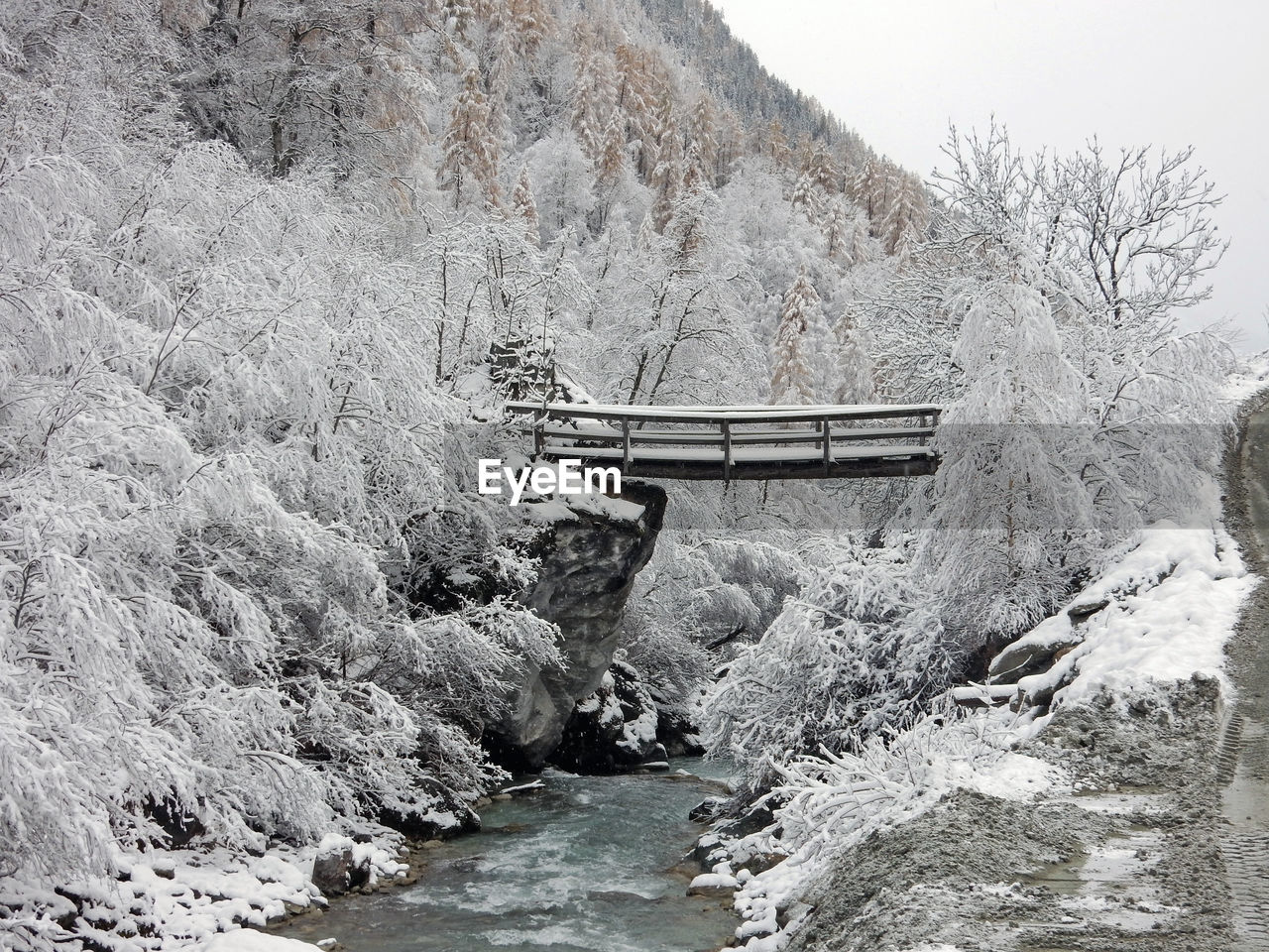 water, bridge, connection, transportation, beauty in nature, mountain, nature, scenics - nature, bridge - man made structure, day, no people, tranquility, built structure, cold temperature, river, architecture, tree, tranquil scene, winter, outdoors, footbridge, flowing water