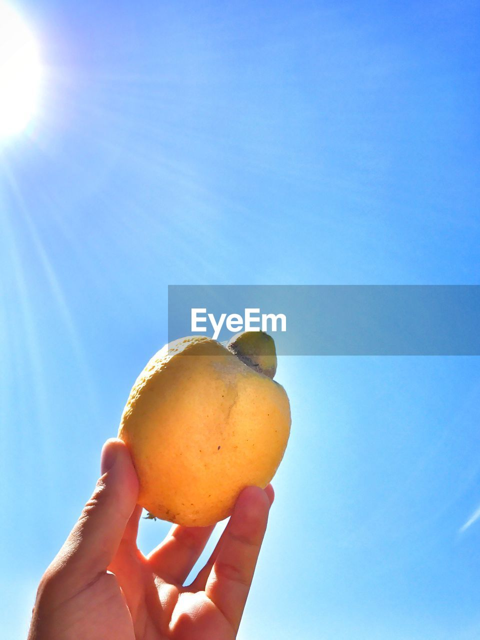 human hand, one person, human body part, holding, blue, food and drink, fruit, sunlight, real people, sky, outdoors, healthy eating, low angle view, food, day, freshness, clear sky, nature, lifestyles, healthy lifestyle, beauty in nature, close-up, people