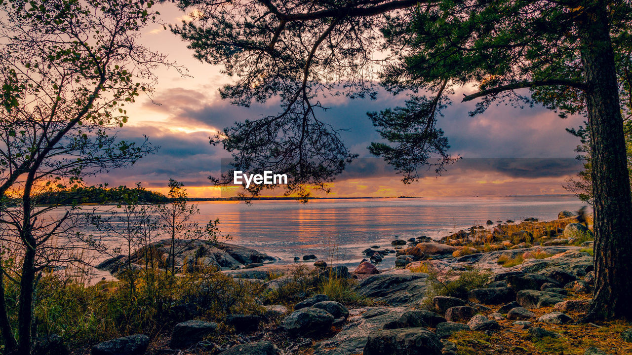 beauty in nature, nature, sunset, water, sky, scenics, tree, tranquil scene, tranquility, cloud - sky, no people, sea, outdoors, horizon over water, growth, day