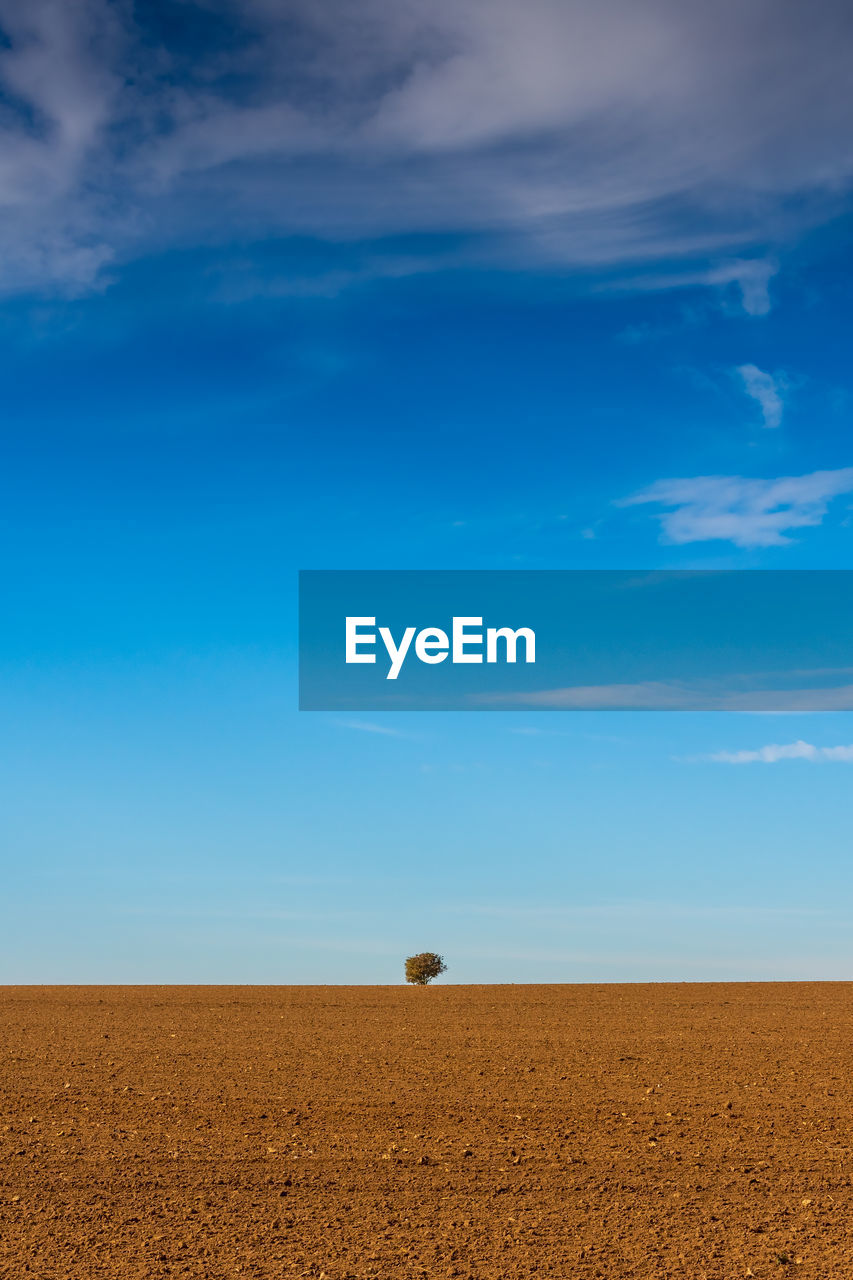 sky, cloud - sky, land, landscape, environment, beauty in nature, blue, tranquility, tranquil scene, nature, scenics - nature, no people, field, horizon over land, agriculture, day, horizon, plant, rural scene, outdoors, arid climate