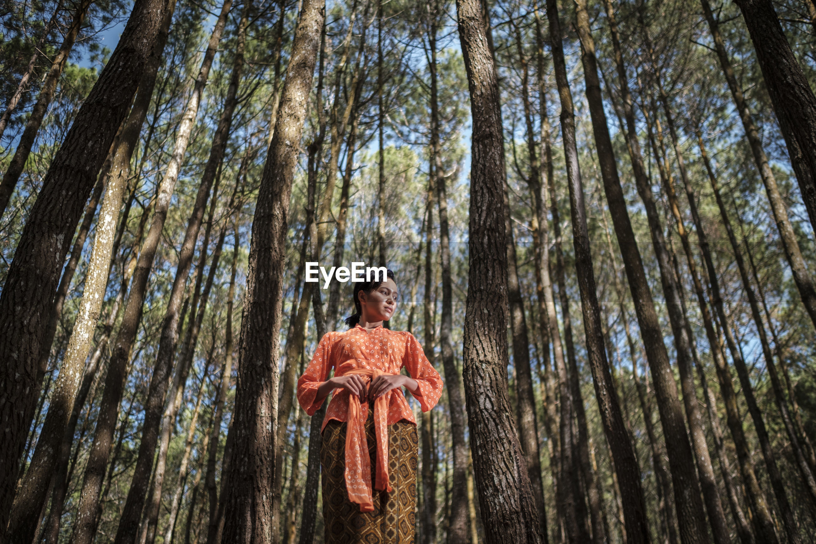 Low angle view of young woman standing at forest
