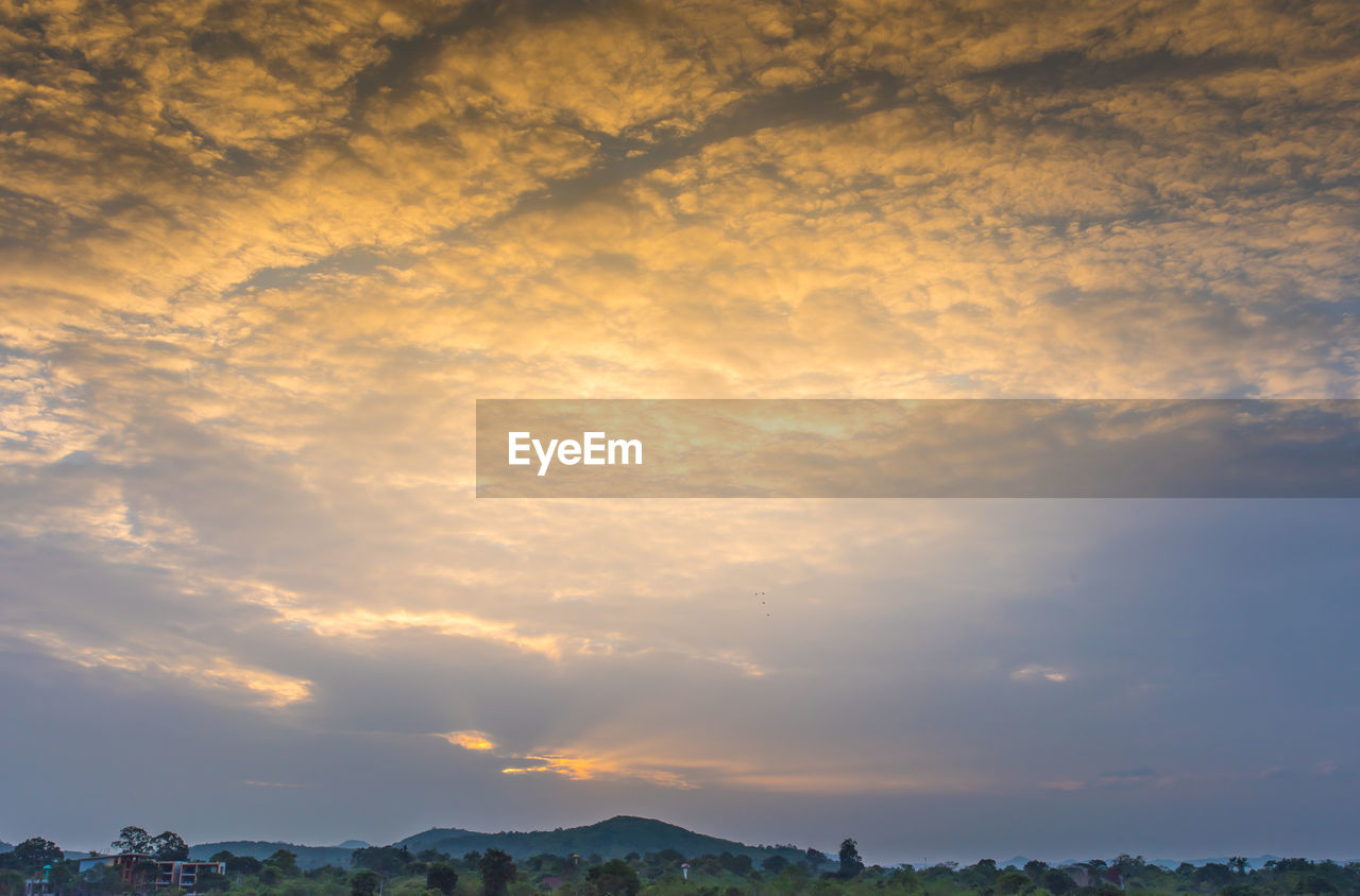 cloud - sky, sky, beauty in nature, scenics - nature, tranquility, tranquil scene, sunset, nature, no people, idyllic, low angle view, orange color, outdoors, non-urban scene, tree, cloudscape, environment, overcast, day