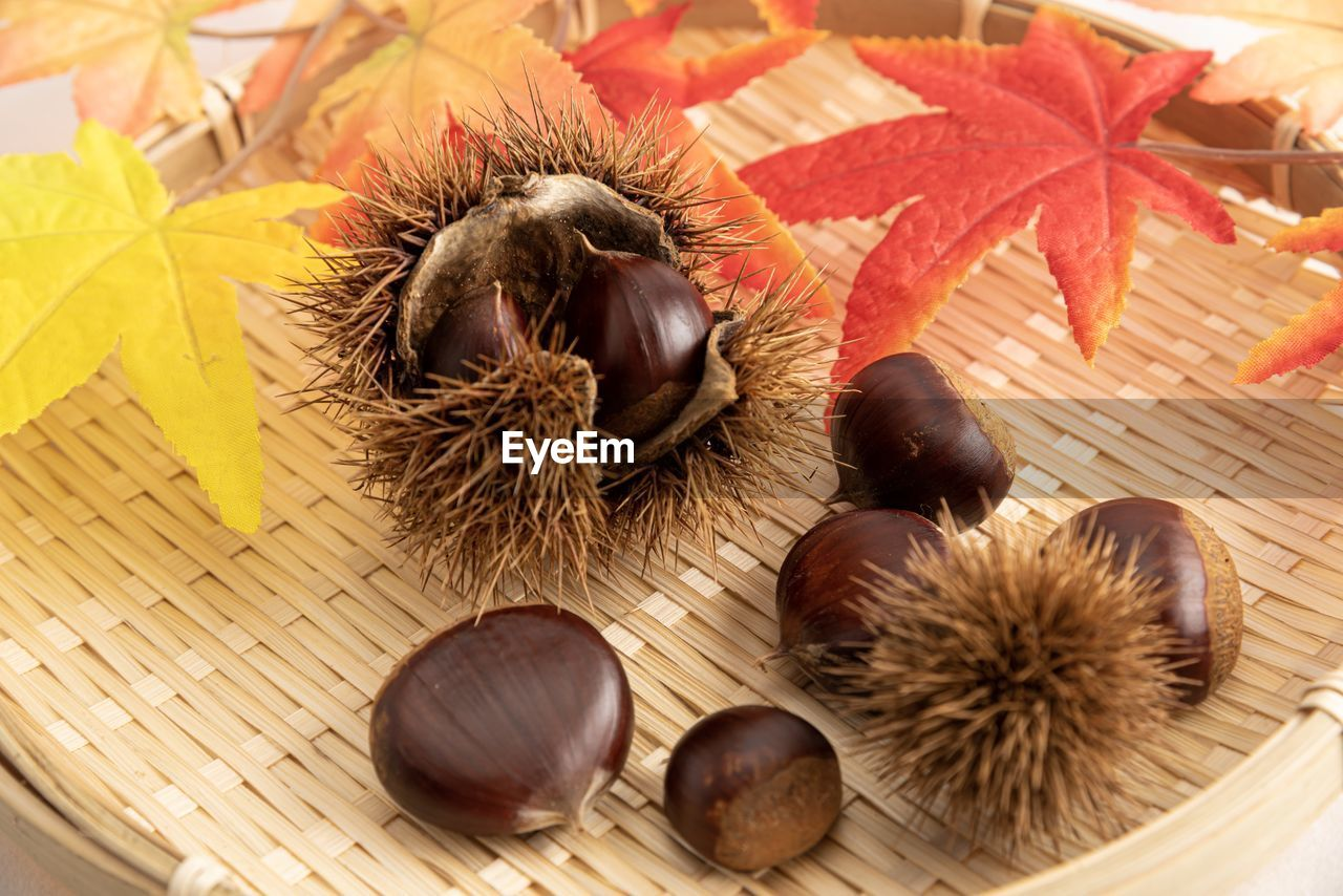 food and drink, food, freshness, still life, wellbeing, healthy eating, no people, close-up, high angle view, chestnut, nut, chestnut - food, nut - food, table, indoors, leaf, plant part, choice, container, raw food, leaves