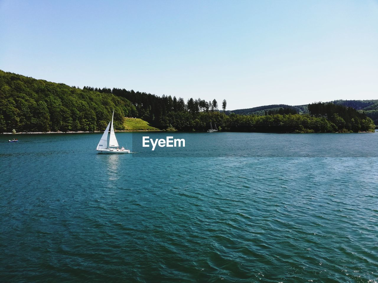 water, sky, beauty in nature, waterfront, clear sky, scenics - nature, tranquility, tree, transportation, nautical vessel, tranquil scene, copy space, nature, plant, sailboat, day, sea, no people, non-urban scene, outdoors