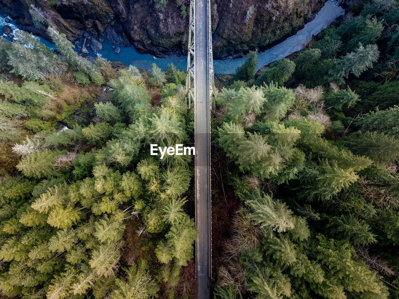 Aerial View Of Bridge Amidst Trees