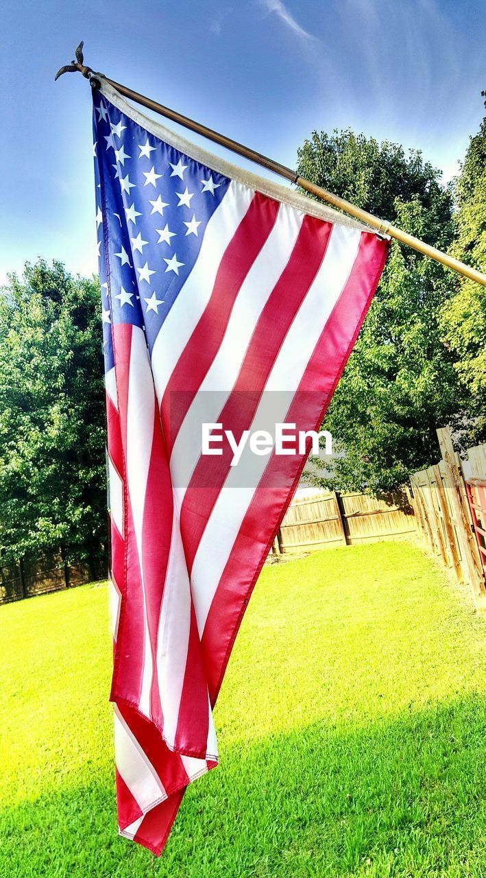 flag, patriotism, tree, striped, no people, stars and stripes, day, outdoors, sky, growth, grass, nature, close-up