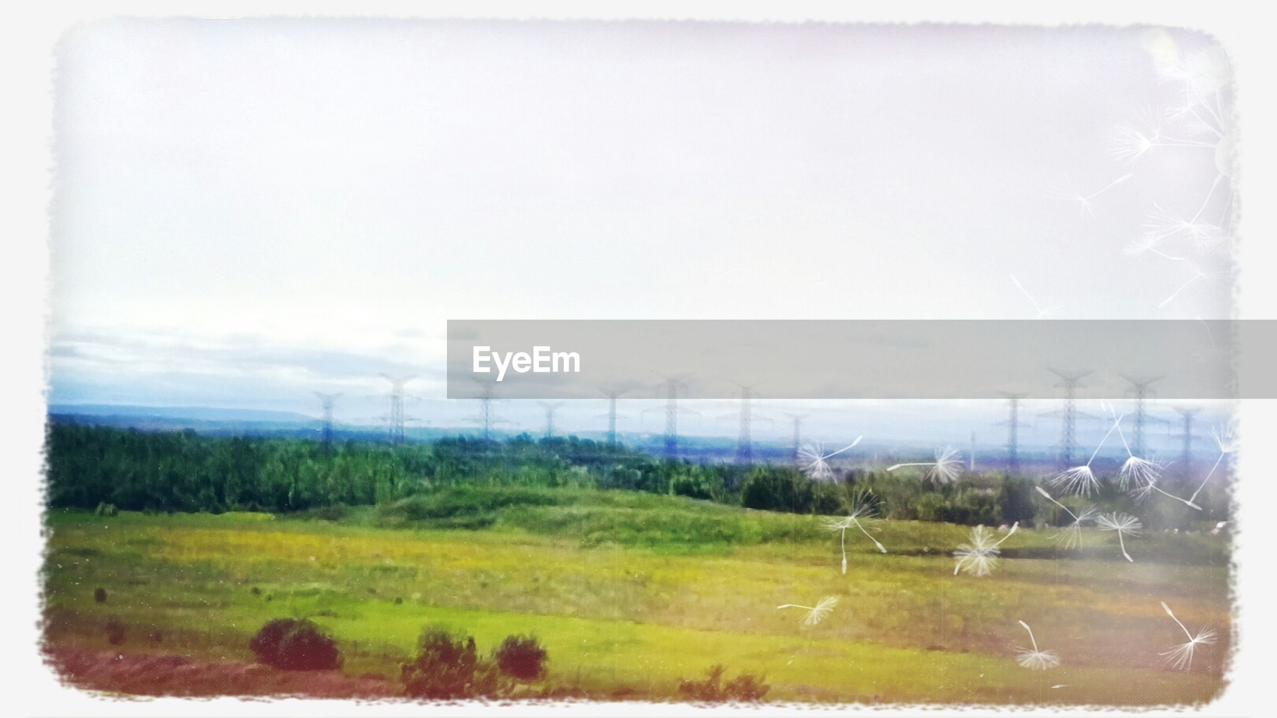 grass, transfer print, field, landscape, tranquil scene, sky, tranquility, scenics, auto post production filter, nature, beauty in nature, rural scene, water, wind power, wind turbine, fuel and power generation, environmental conservation, plant, alternative energy, green color