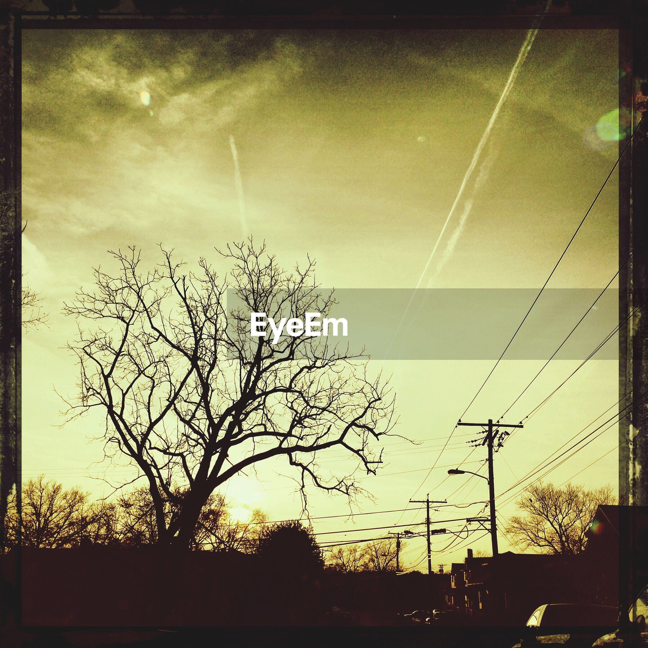 transfer print, silhouette, sky, tree, low angle view, sun, sunset, bare tree, auto post production filter, electricity pylon, power line, sunbeam, sunlight, nature, tranquility, beauty in nature, scenics, tranquil scene, cloud - sky, lens flare