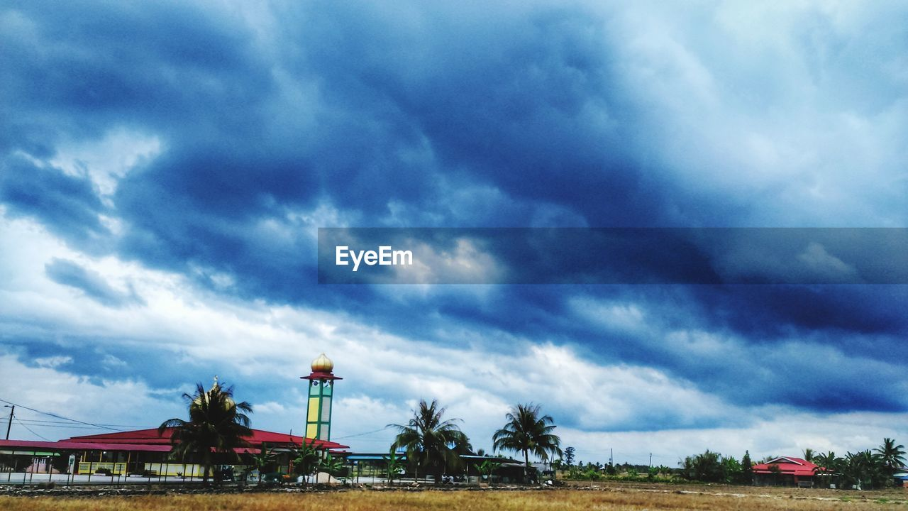 cloud - sky, sky, day, tree, nature, outdoors, transportation, beauty in nature, palm tree, scenics, no people, land vehicle, blue