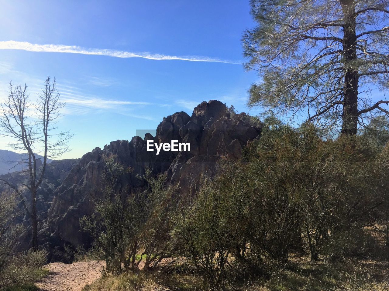 sky, plant, tree, tranquility, beauty in nature, tranquil scene, scenics - nature, rock, nature, environment, landscape, mountain, non-urban scene, land, no people, day, cloud - sky, growth, rock - object, rock formation, outdoors, arid climate, formation, eroded, mountain range
