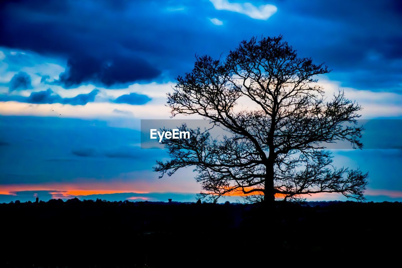 sky, tree, silhouette, cloud - sky, beauty in nature, tranquility, tranquil scene, nature, scenics, sunset, outdoors, bare tree, branch, blue, landscape, no people, lone, day