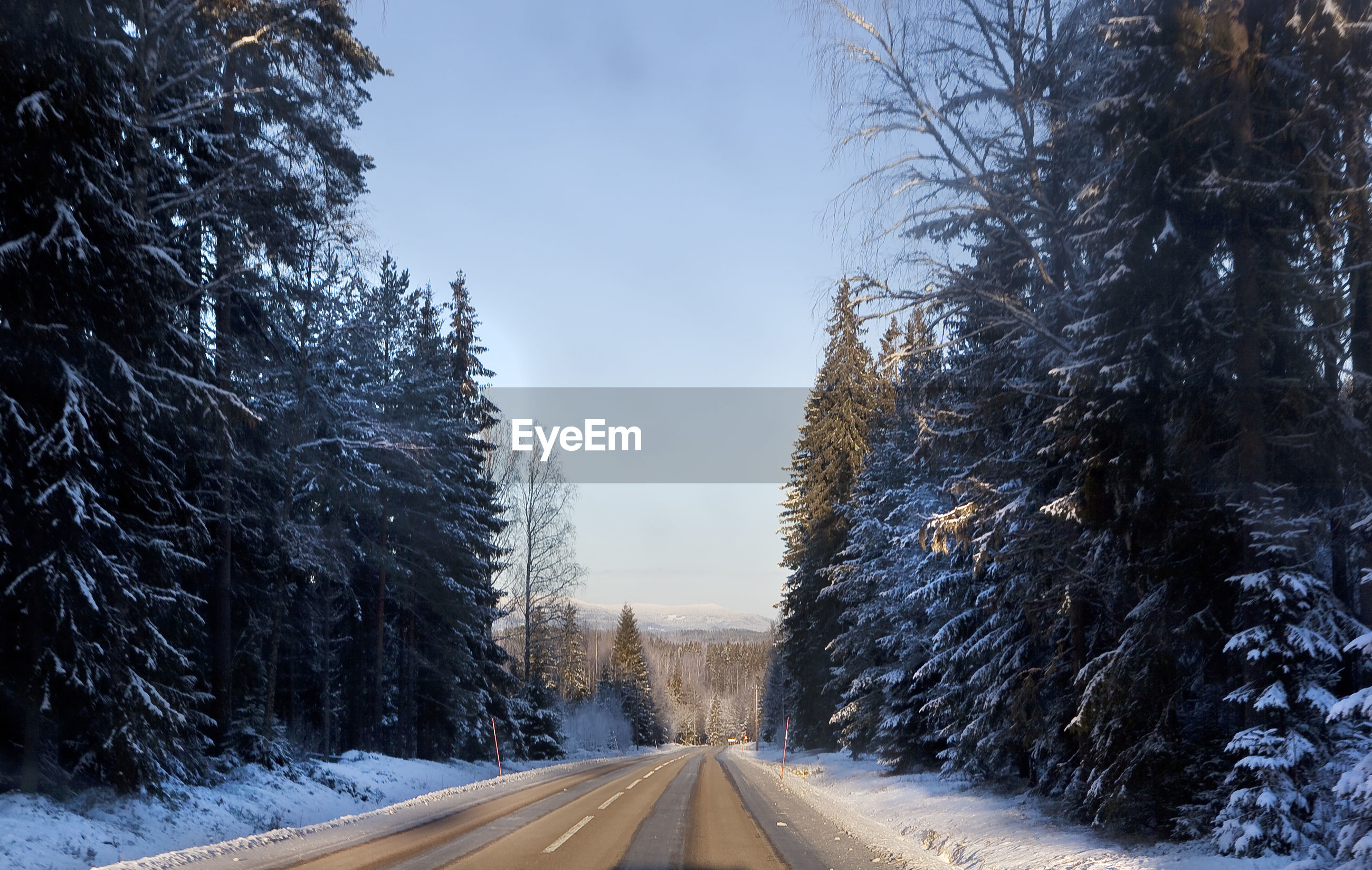 EMPTY ROAD ALONG SNOW COVERED TREES AGAINST SKY