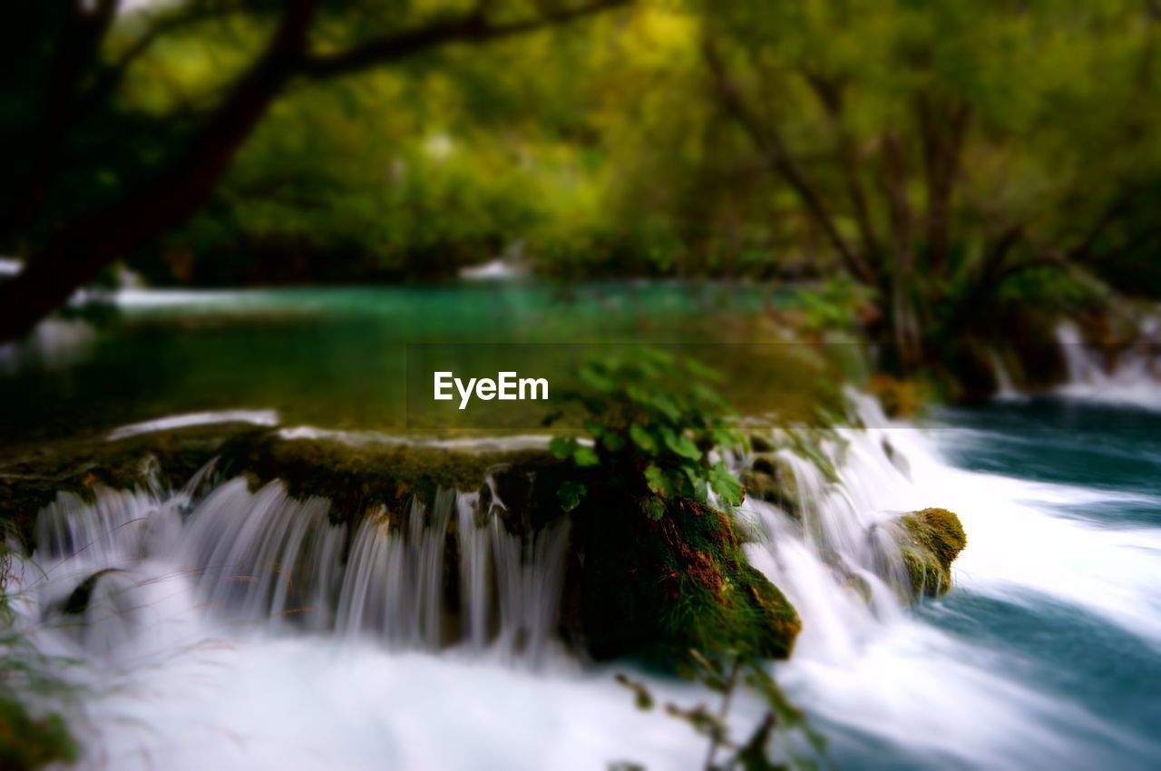 water, long exposure, motion, beauty in nature, blurred motion, nature, scenics - nature, plant, no people, tree, flowing water, waterfall, day, river, flowing, outdoors, selective focus, forest, land, purity
