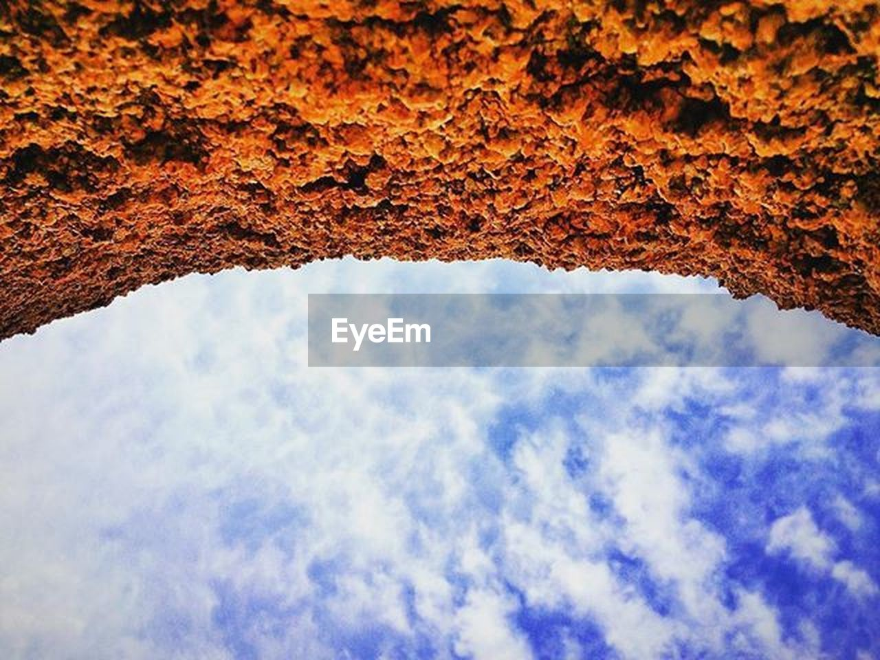 low angle view, nature, sky, beauty in nature, day, no people, outdoors, textured, backgrounds, cloud - sky, tree, close-up