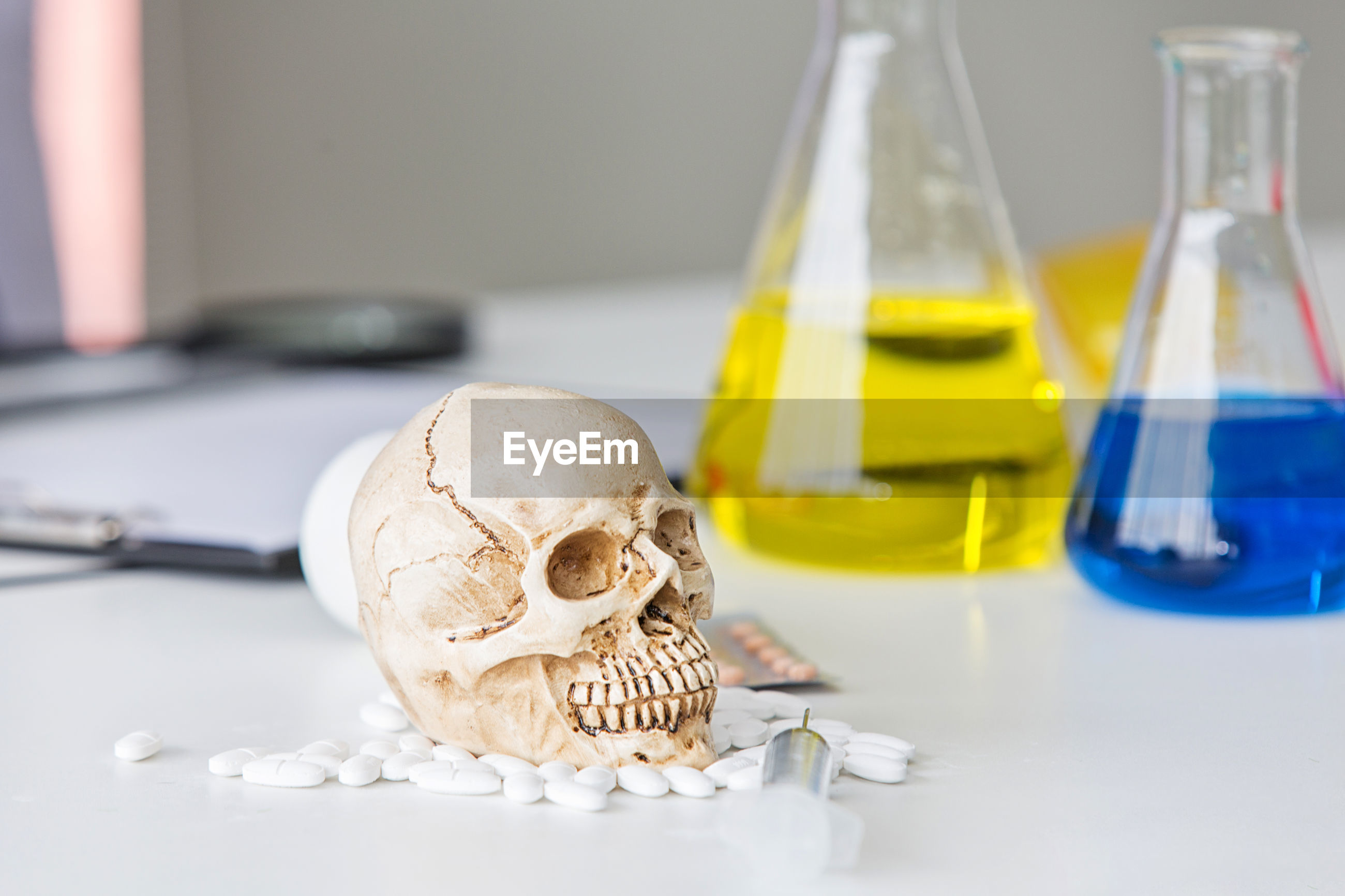 Science laboratory test tubes. skull and beaker chemical. volatile substances and skull laboratory.