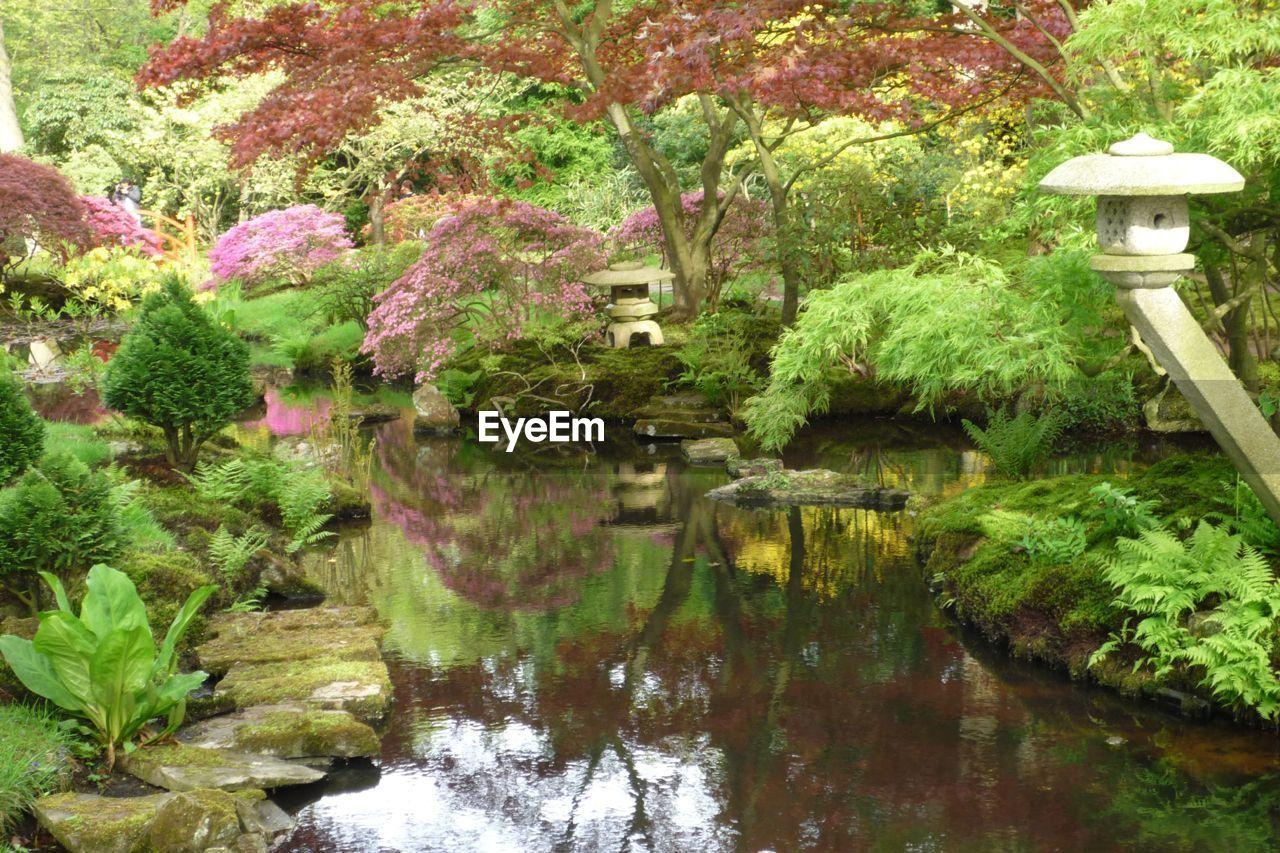 View Of Japanese Garden
