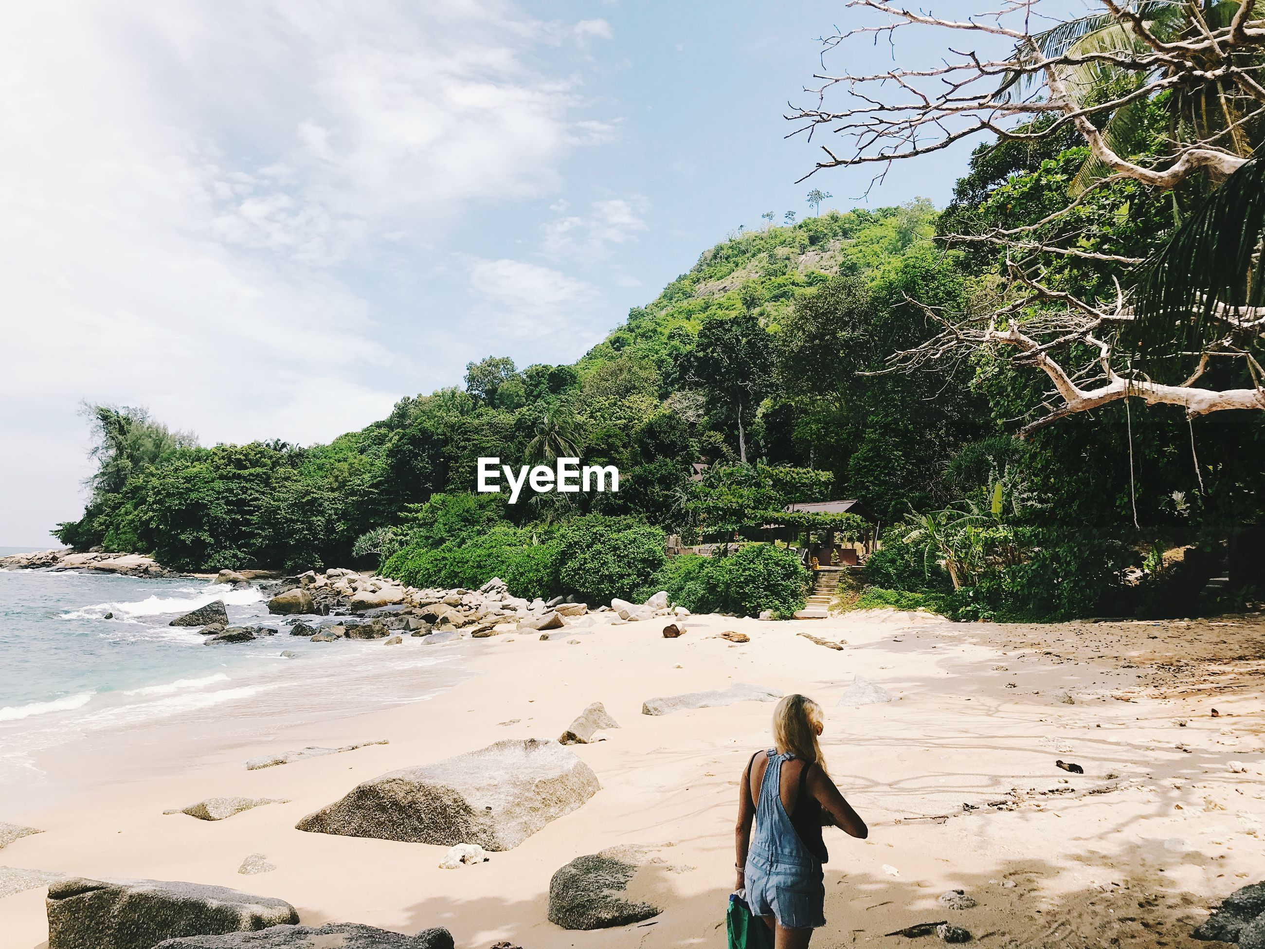 Rear view of woman standing at beach against trees