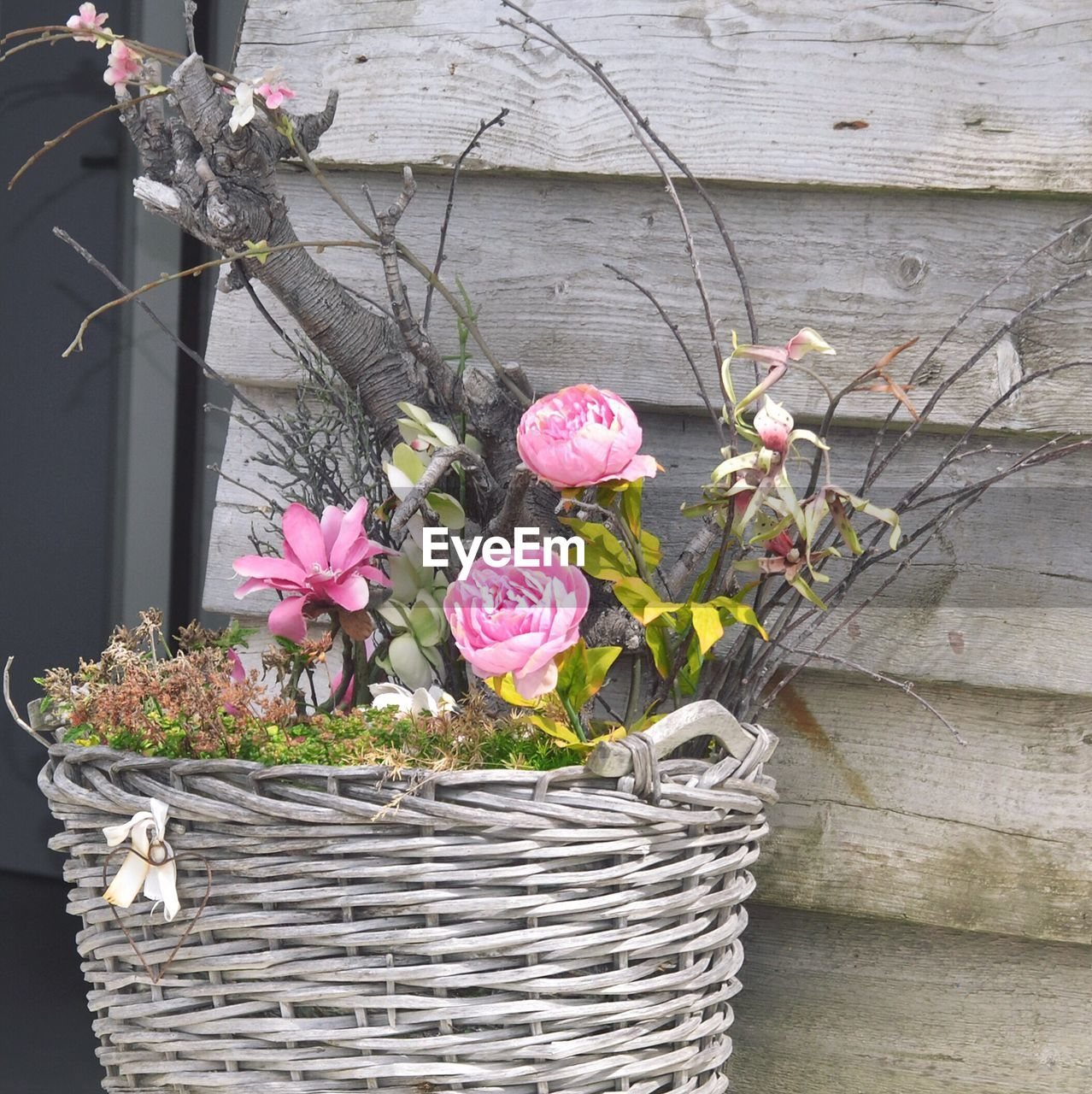 flower, basket, pink color, petal, no people, outdoors, day, freshness, fragility, plant, wood - material, nature, growth, beauty in nature, flower head, close-up
