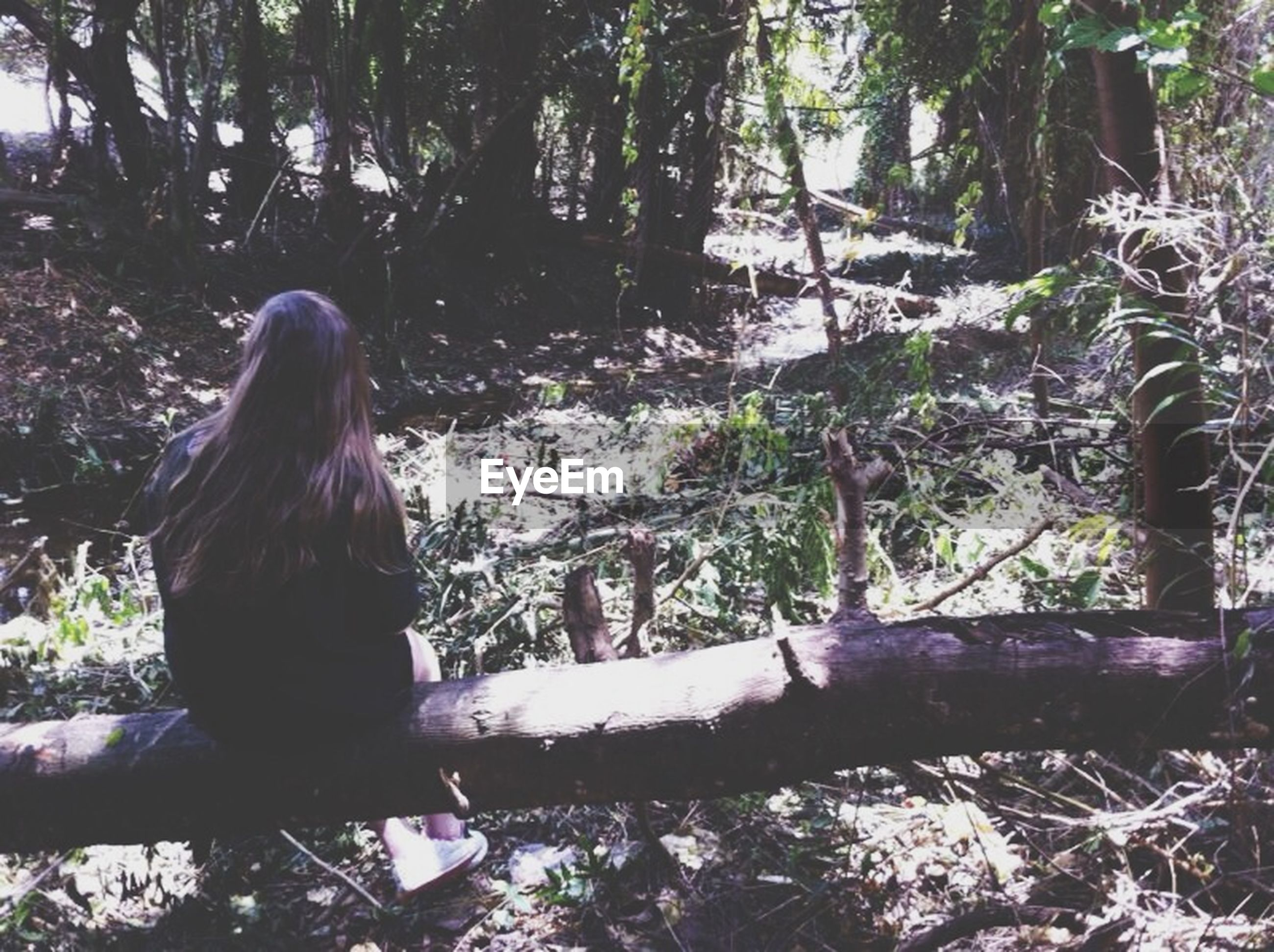 tree, forest, lifestyles, leisure activity, young adult, tree trunk, young women, person, sitting, nature, casual clothing, long hair, day, waist up, tranquility, standing, rear view, three quarter length