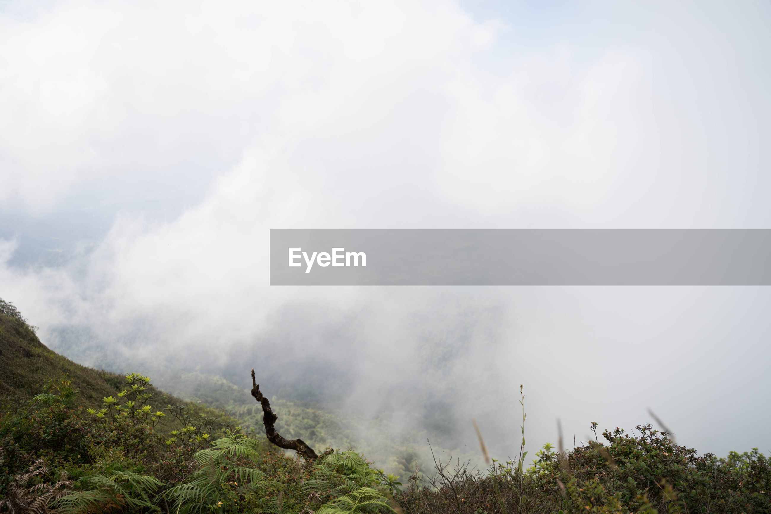 SCENIC VIEW OF FOG AGAINST SKY