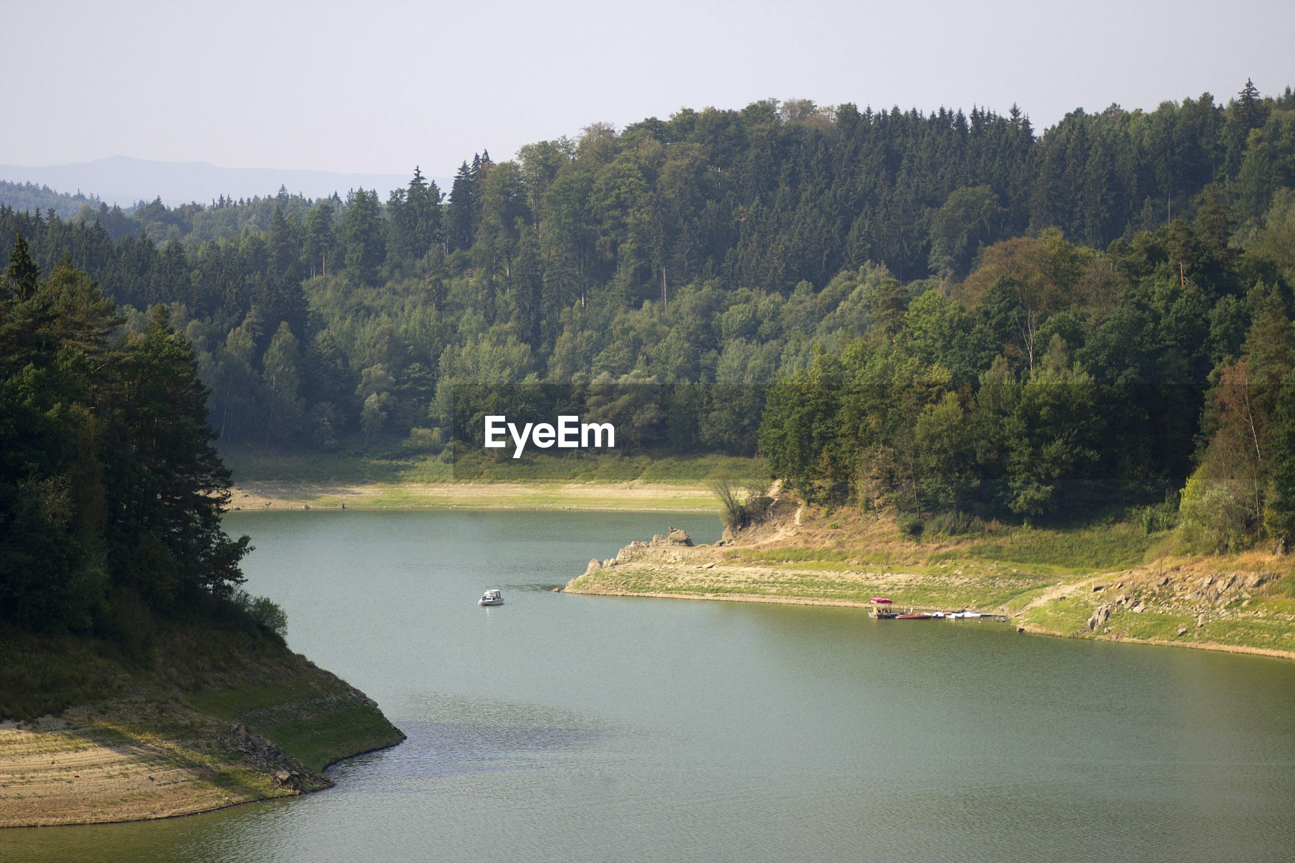 View of river surrounded by trees