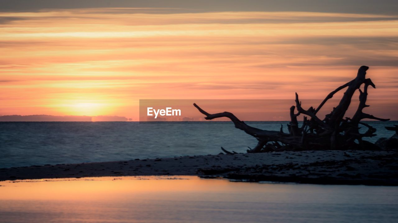 Driftwood At Beach Against Sky During Sunset