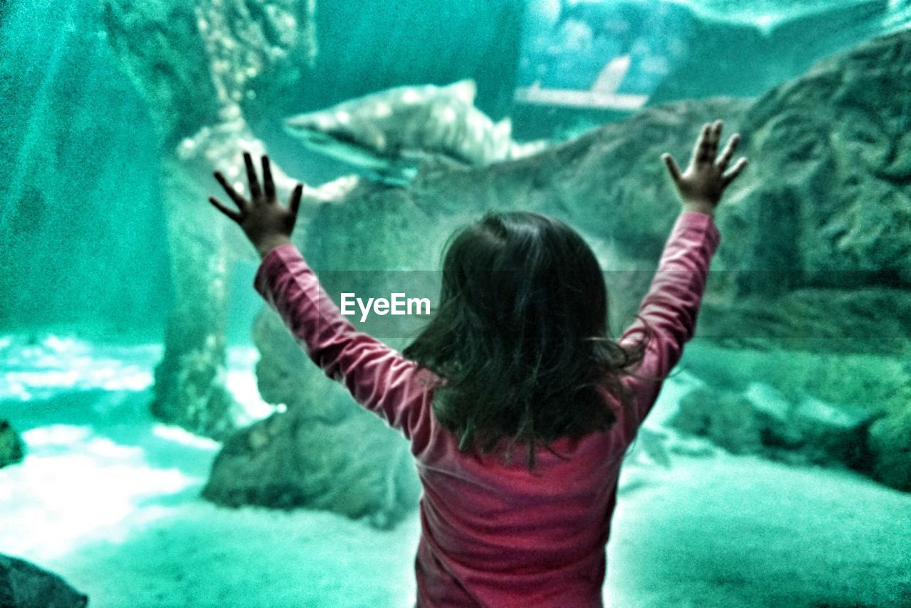 human arm, arms raised, rear view, limb, human body part, one person, indoors, gesturing, arms outstretched, reaching, excitement, human hand, day, one woman only, aquarium, adults only, people, adult, animal themes