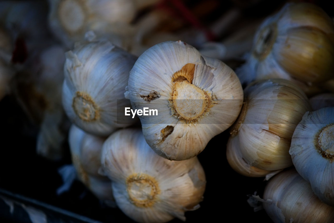 food, food and drink, wellbeing, still life, close-up, freshness, no people, healthy eating, vegetable, spice, ingredient, garlic, raw food, indoors, selective focus, shell, large group of objects, high angle view, for sale, garlic bulb