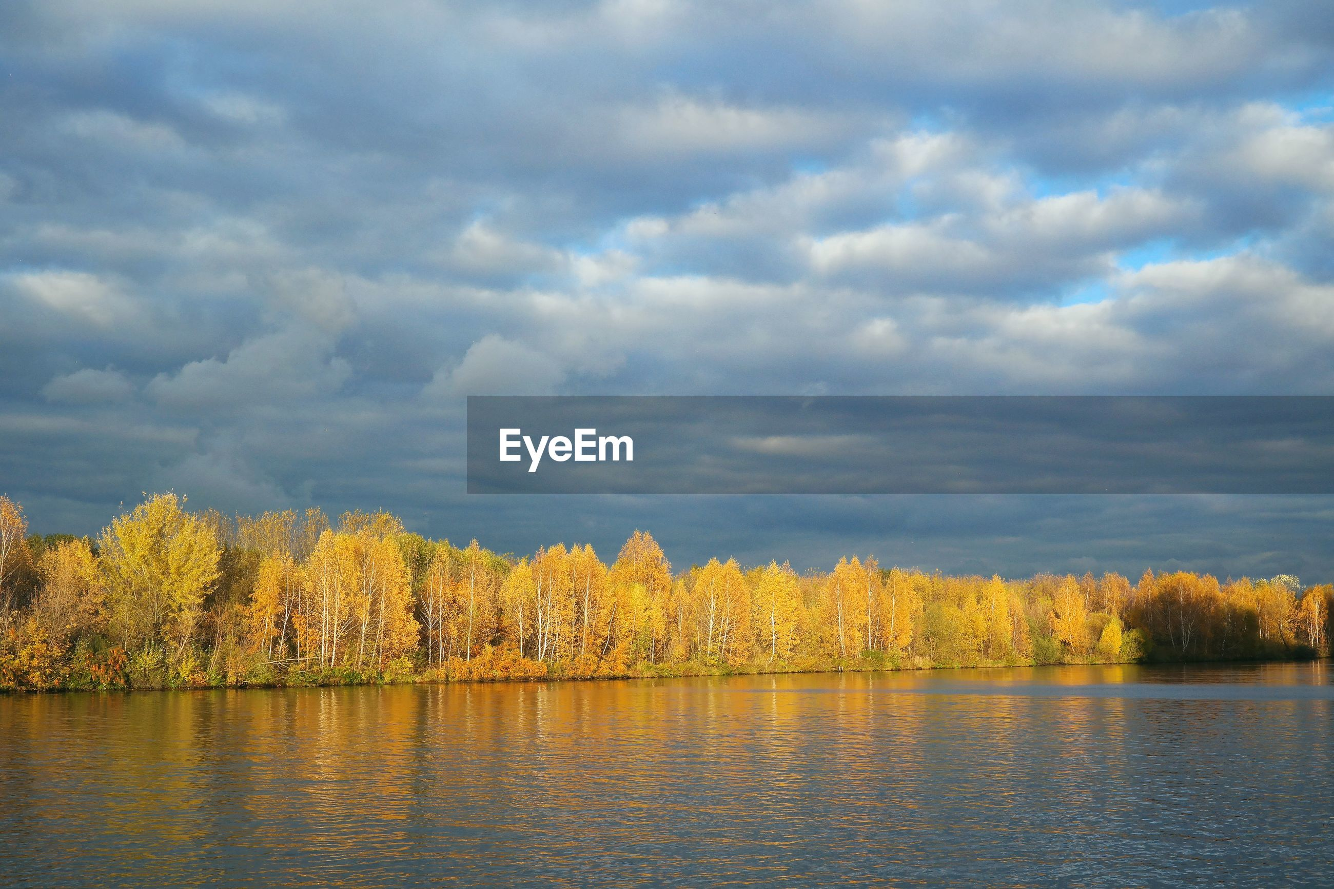 LAKE BY TREES AGAINST SKY