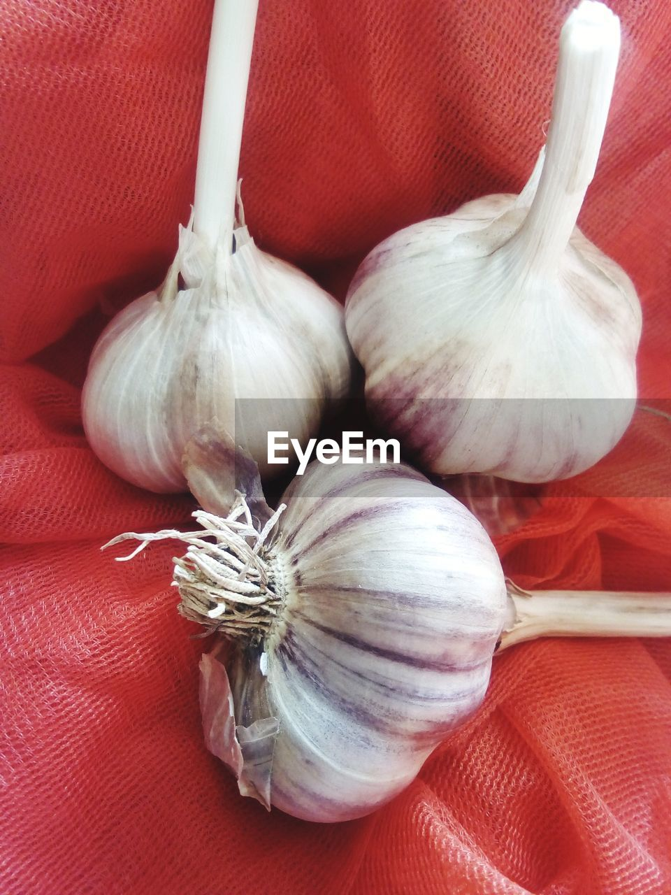 food and drink, vegetable, food, garlic, spice, ingredient, freshness, wellbeing, still life, garlic bulb, raw food, close-up, indoors, healthy eating, no people, onion, red, group of objects, high angle view, medium group of objects, garlic clove