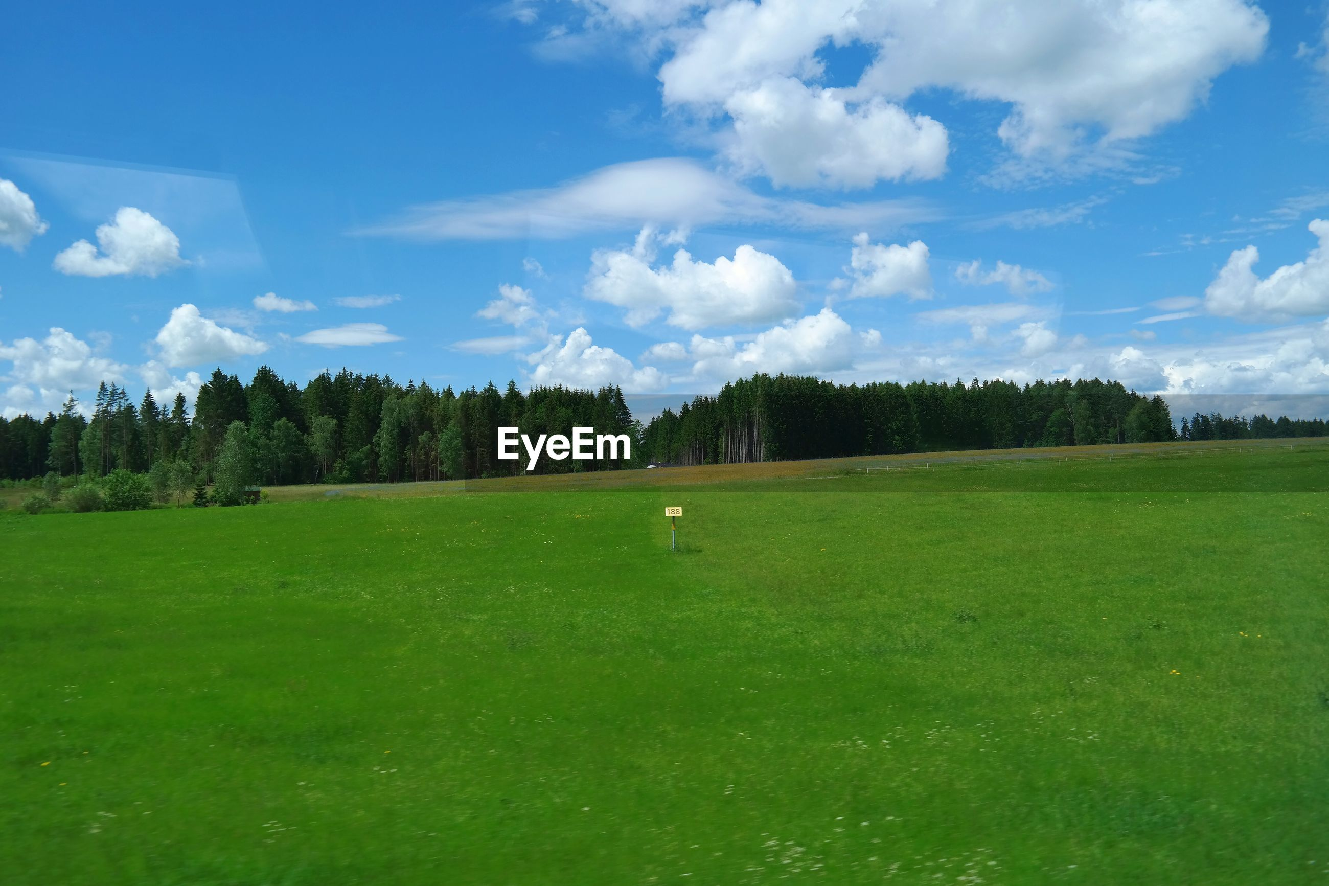 SCENIC VIEW OF GRASSY LANDSCAPE AGAINST CLOUDY SKY