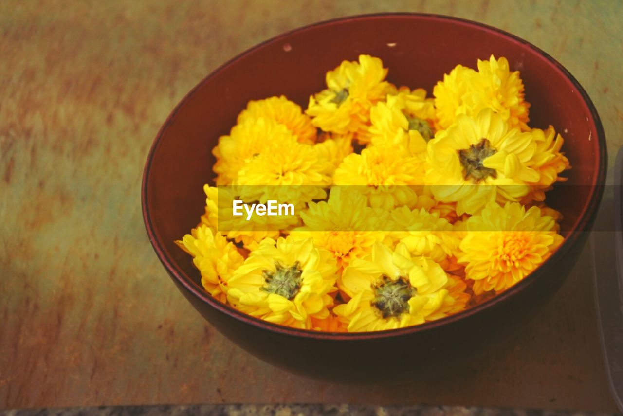 flower, yellow, freshness, bowl, high angle view, container, close-up, fragility, petal, no people, indoors, marigold, flower head, nature, day
