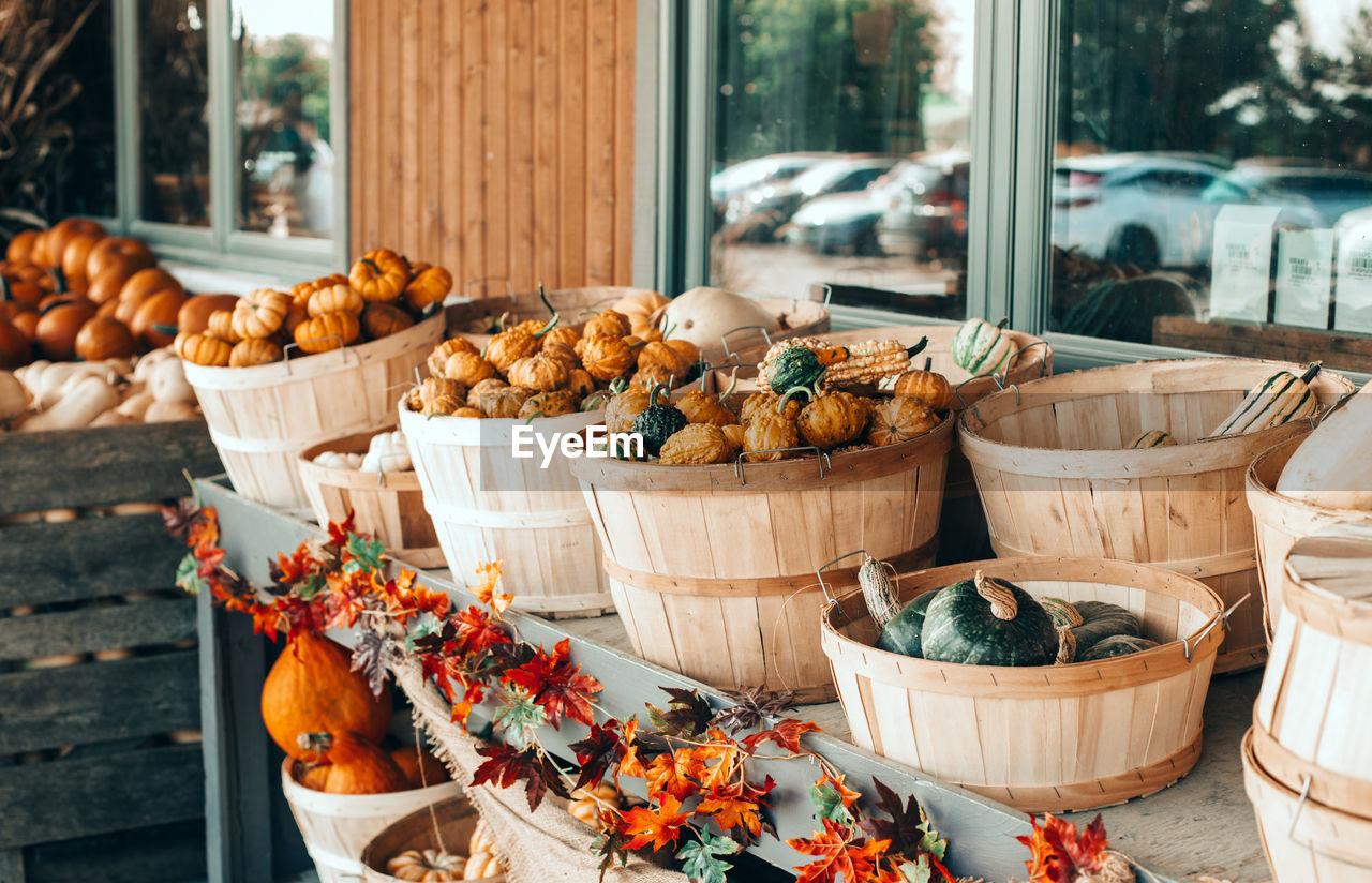 Red, green, white pumpkins in baskets on farm. autumn fall harvest. fresh seasonal vegetables