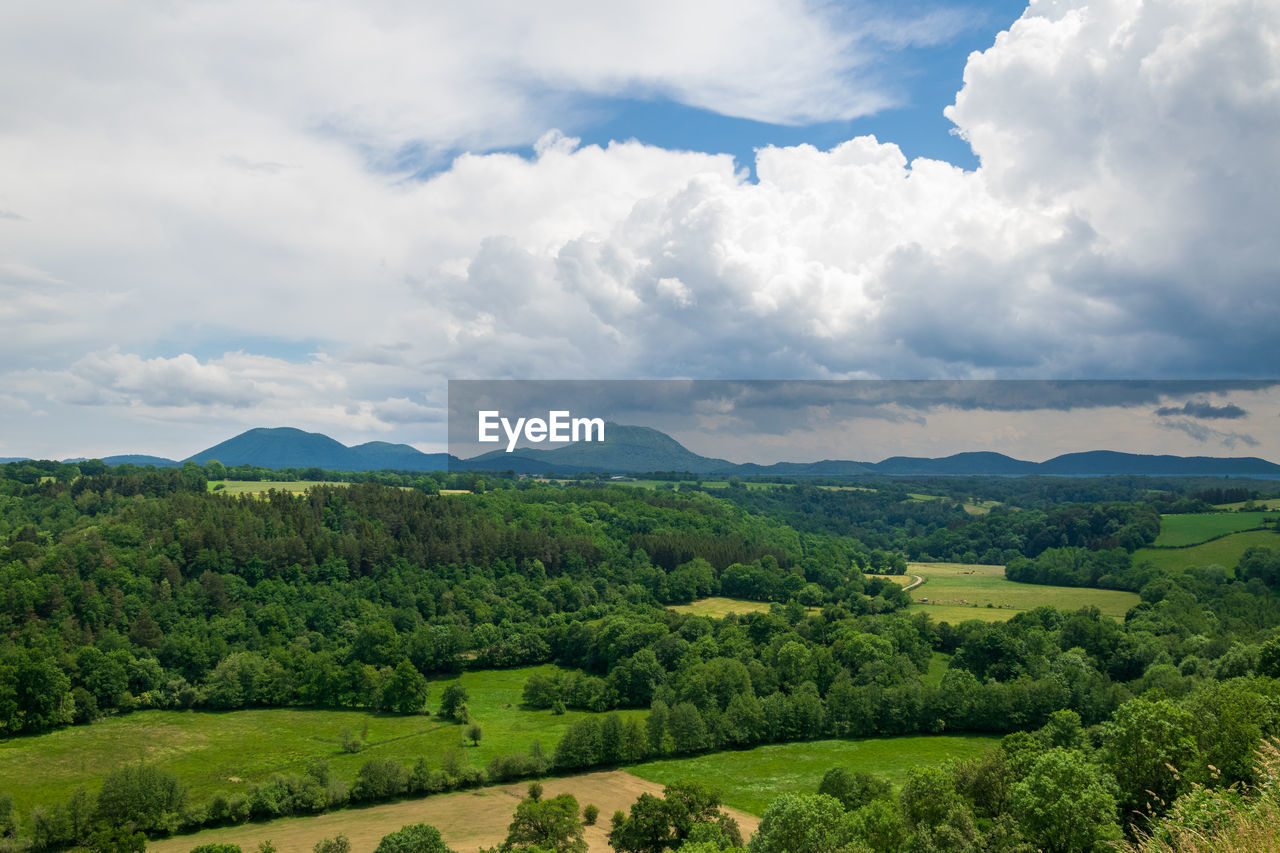 SCENIC VIEW OF LANDSCAPE AND TREES AGAINST SKY
