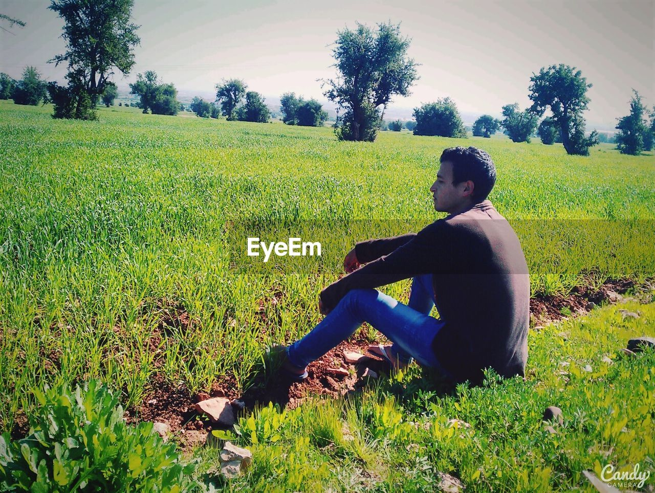 one person, plant, green color, land, field, real people, nature, growth, sitting, grass, lifestyles, tree, landscape, leisure activity, side view, beauty in nature, young adult, young men, day, outdoors, teenager