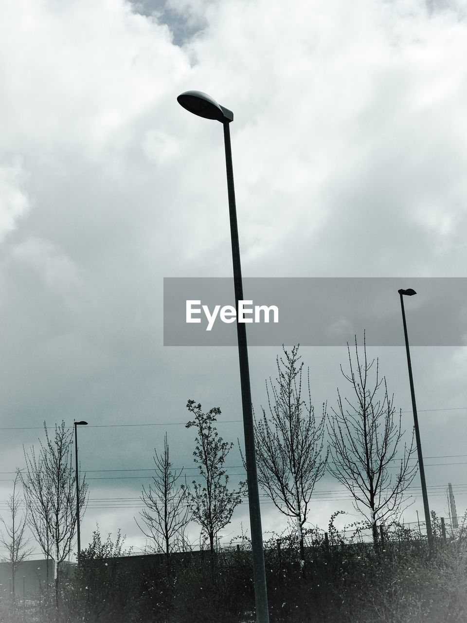 sky, cloud - sky, outdoors, low angle view, street light, bare tree, day, tranquility, no people, tree, nature, beauty in nature