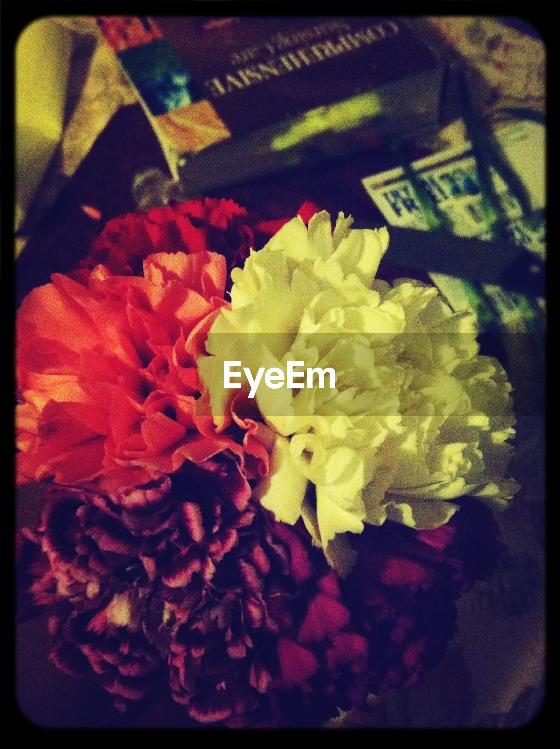 transfer print, flower, auto post production filter, petal, freshness, flower head, close-up, fragility, indoors, high angle view, rose - flower, beauty in nature, growth, nature, no people, plant, bouquet, yellow, focus on foreground, bunch of flowers
