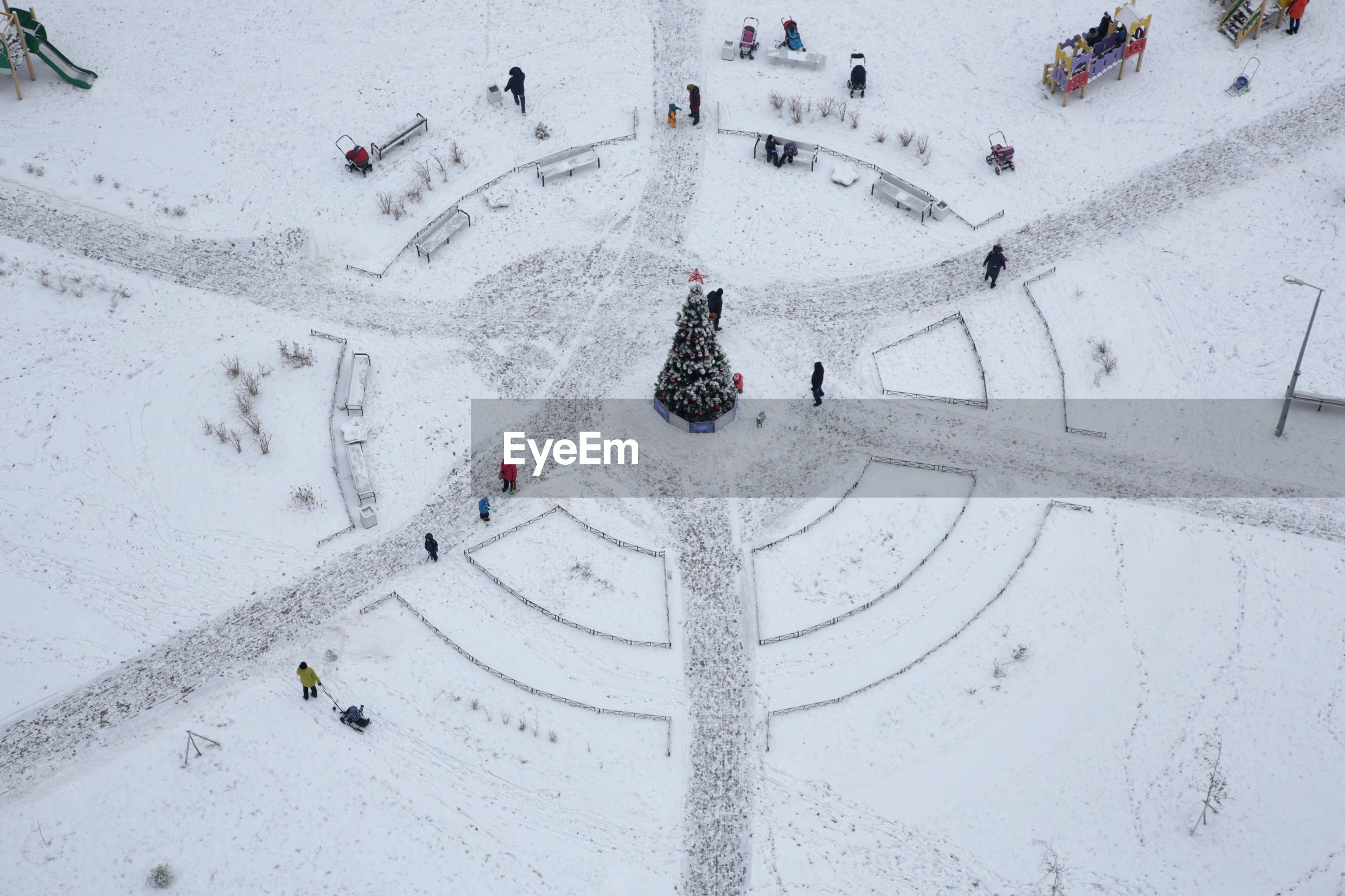High angle view of christmas tree amidst city during winter