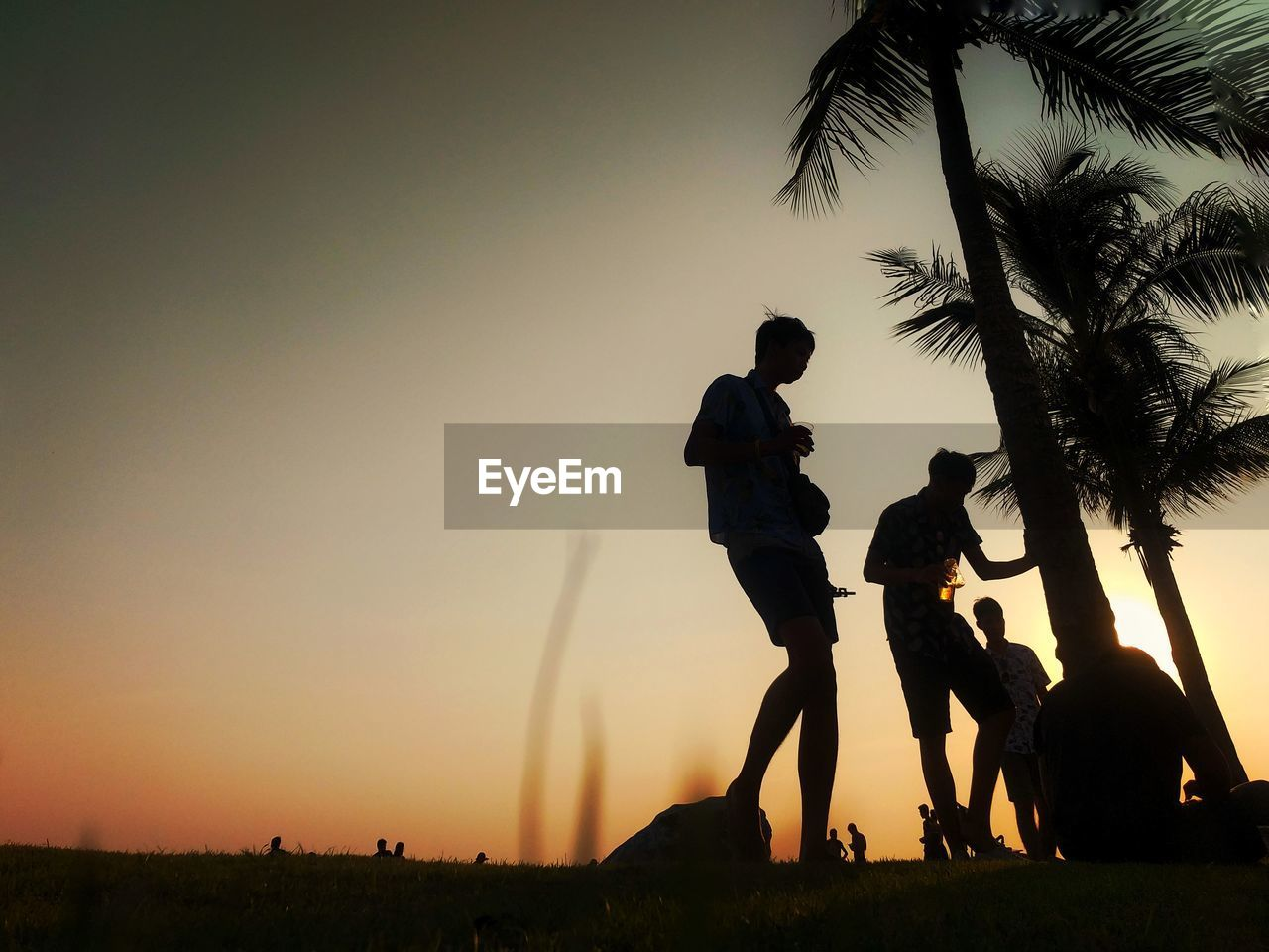sky, sunset, silhouette, group of people, men, tree, tropical climate, palm tree, nature, plant, real people, people, leisure activity, lifestyles, orange color, togetherness, land, child, clear sky, outdoors