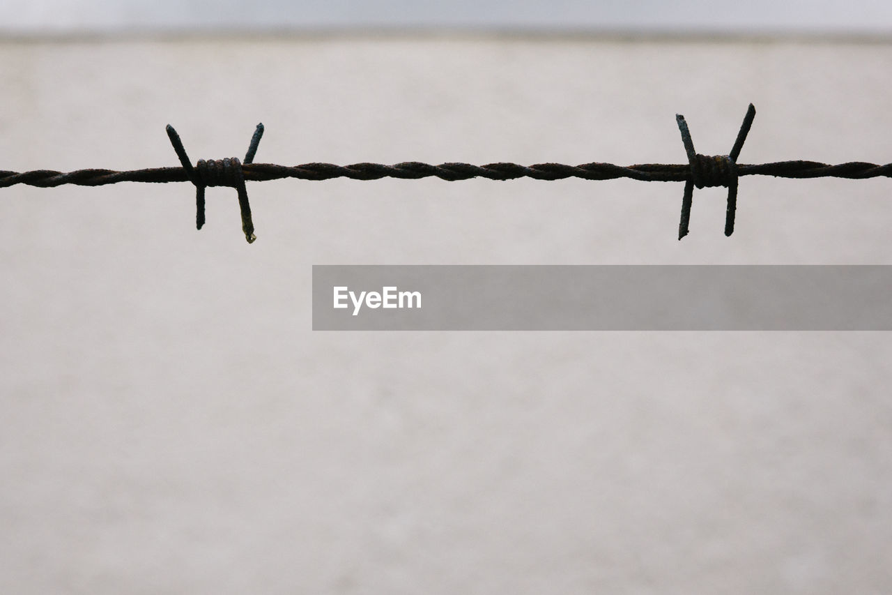 Close-up of barbed wire against wall