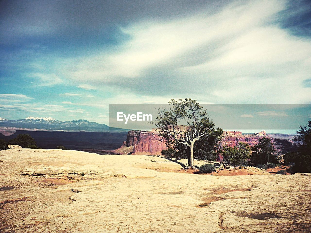 sky, tree, landscape, rock - object, nature, tranquility, tranquil scene, cloud - sky, day, beauty in nature, scenics, no people, outdoors, bare tree, mountain