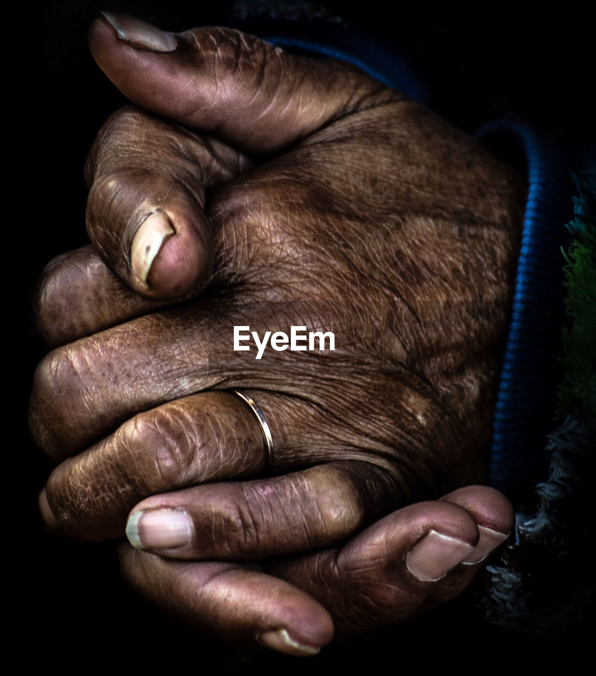 human hand, hand, human body part, one person, real people, indoors, close-up, one animal, men, holding, mammal, adult, midsection, finger, human finger, detail, body part, black background, care