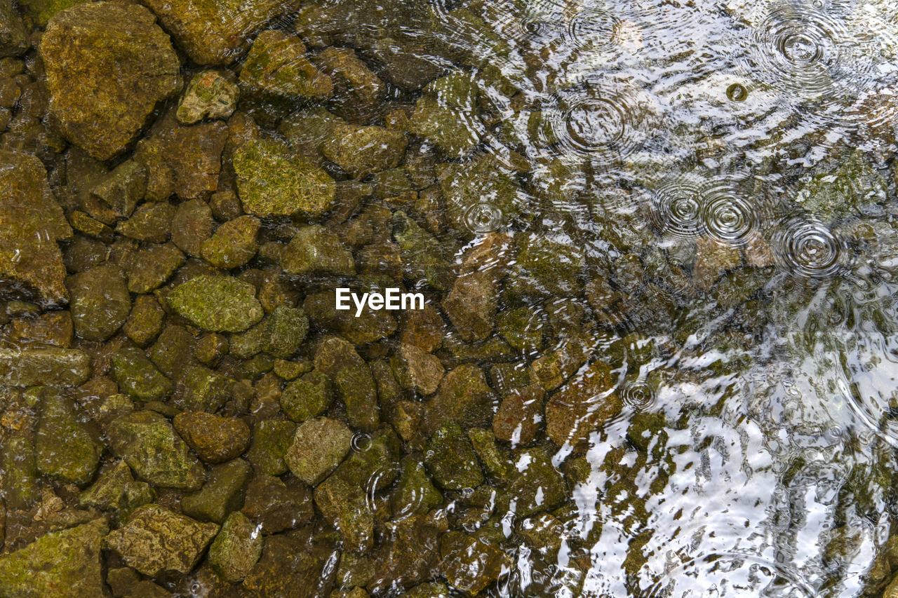 water, nature, no people, full frame, high angle view, rippled, backgrounds, day, waterfront, close-up, lake, outdoors, motion, wet, directly above, textured, transparent, shallow, purity