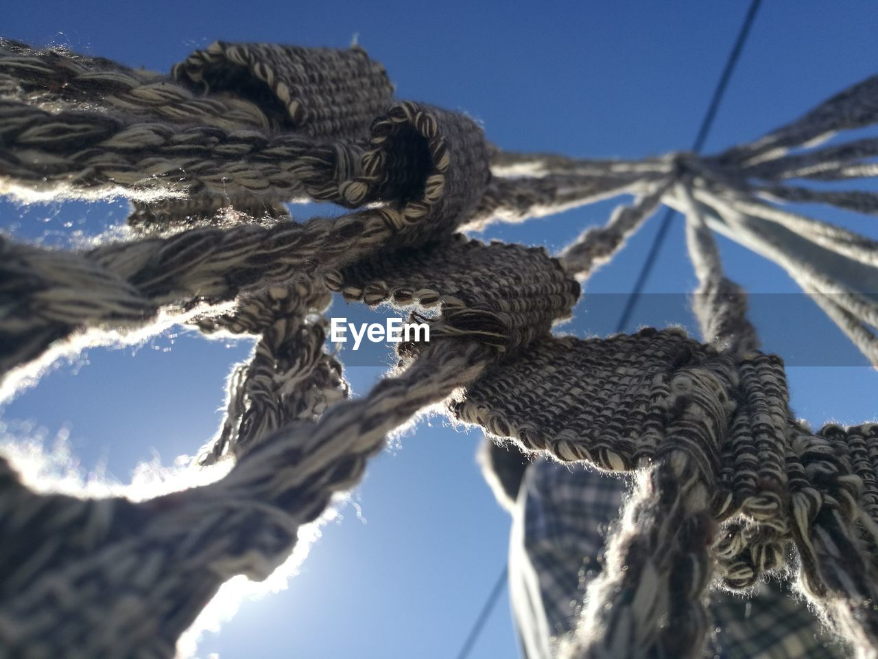 Low Angle View Of Rope Tied On Tree